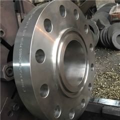 F310 Stainless Steel RTJ Flange
